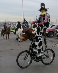 Stretch with his trusty steed, Meals on Wheels at the Coors Field staging area for the National Western Stock show Parade in Denver